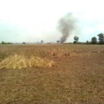 Kebakaran Lahan Gambut