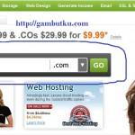 Domain .info Murah pada Go Daddy