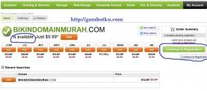 domain .info murah