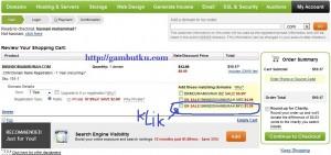 domain info murah
