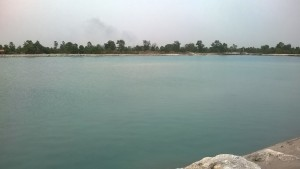 Danau Biru Gambut Kalimantan Selatan