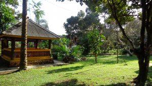 Agrowisata Petik Durina Meek Farm Banjarbaru