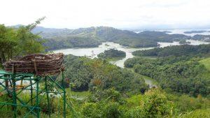 Bukit Matang Kaladan Riam Kanan Kalimantan Selatan 3