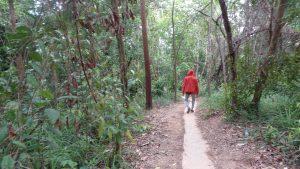 Bukit Matang Kaladan Riam Kanan Aranio Kalimantan Selatan