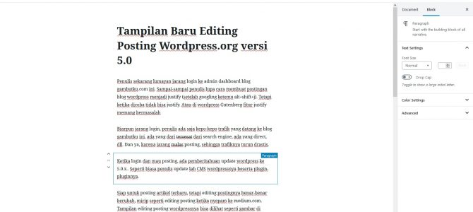 Tampilan Baru Editing Posting WordPress.org versi 5.0