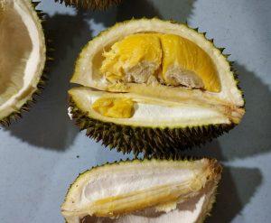 6 Durian Musang King