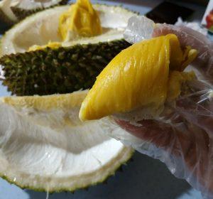 7 Durian Musang King
