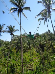 Tegalallang Rice Terrace Ubud Bali Swing Swing